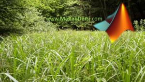 YABANİ OT OPTİMİZASYON ALGORİTMASI-Invasive Weed Optimization